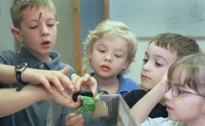Children holding a bug