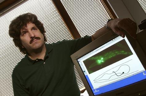 Photo of geneticist Gary Ruvkin