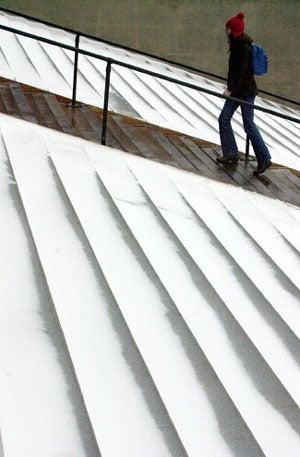Snow covered Widener steps