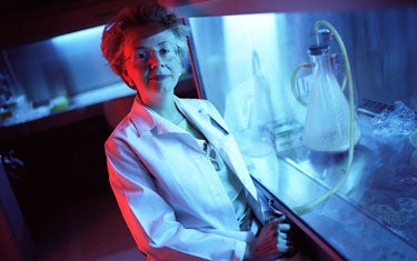 Researcher Denise Faustman in her lab