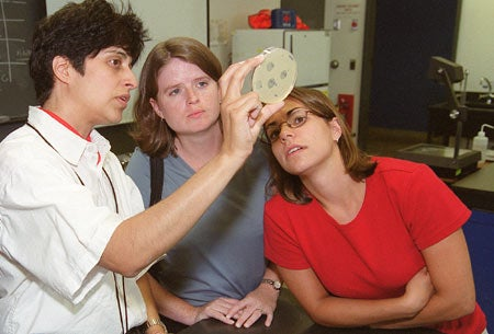 Science teachers examining petri dish