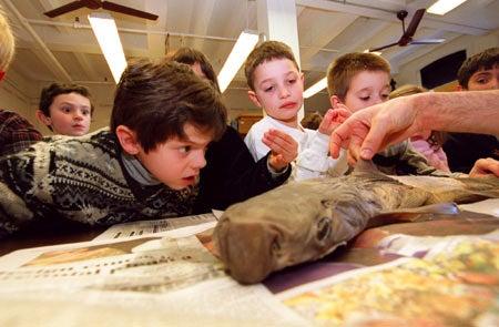 Kids at Harvard Museum of Natural History