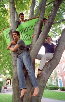 Students take to the trees