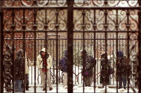 Snow on library gates