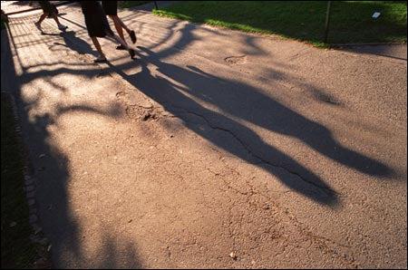 Shadows at Johnston Gate