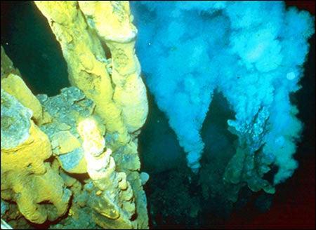 Hydrothermal venting