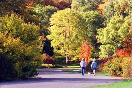Arboretum strollers