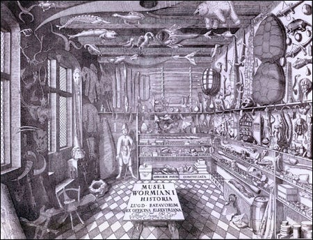 Worm's museum (etching)