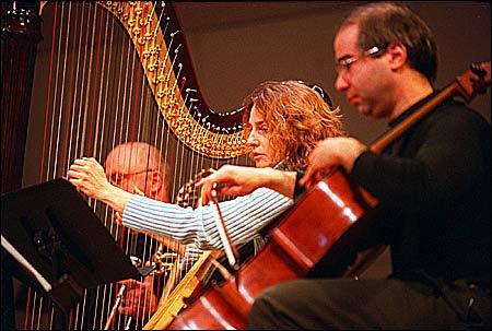 Harpist Elizabeth Morse and cellist Emmanuel Feldman