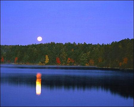 moonrise over Walden Pond