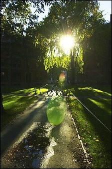 biking in the Yard
