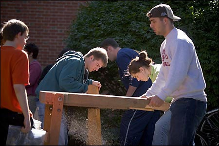 students digging outside Mass Hall