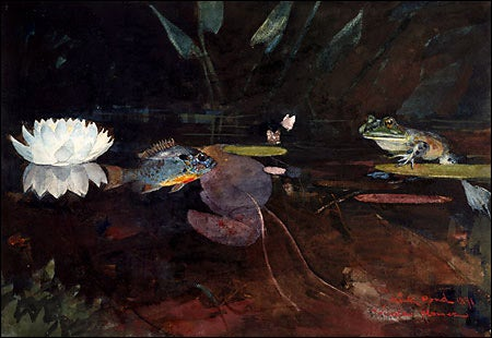 'Mink Pond'