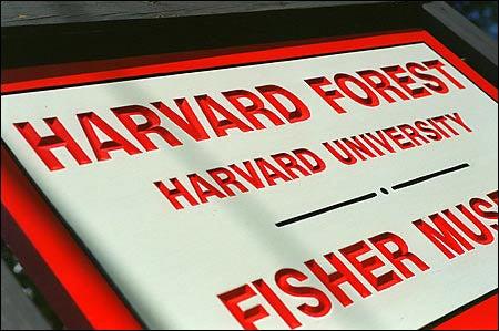 Harvard Forest's 'Wildlands and Woodlands' proposal