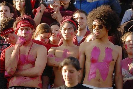 glum Harvard supporters