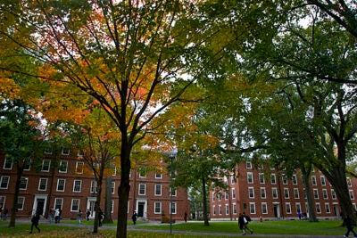 """The kickoff of the Harvard College Homecoming celebration will feature a full lineup of family-friendly activities, including an open-air screening of the movie classic """"Love Story"""" in Harvard Yard."""