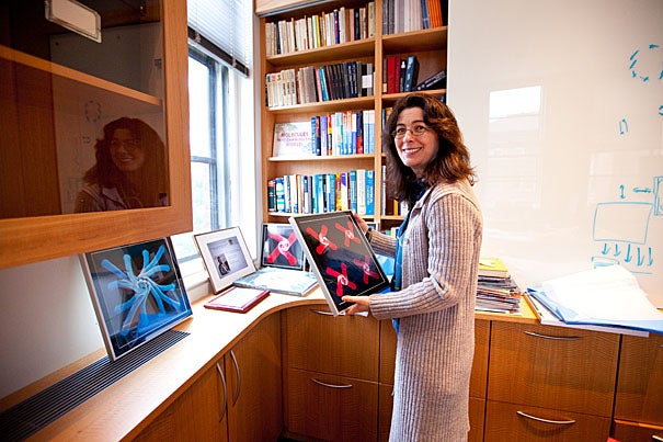 """""""We look at what nature does so nicely, and try to mimic it in the lab,"""" said Joanna Aizenberg, Harvard's Amy Smith Berylson Professor of Materials Science and a pioneering researcher in biomimetics, a branch of science that models new systems and materials on nature."""