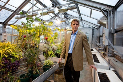 """As part of the Harvard Museum of Natural History's """"Food for Thought"""" lecture series, Samuel Myers, instructor in medicine at Harvard Medical School, laid out evidence that the global food supply is already showing cracks."""