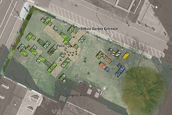 This drawing highlights where the first of Harvard's raised-bed gardens will be located. The 560-square-foot growing space at 27 Holyoke Place in Cambridge, will provide experiential education in sustainable, urban agriculture and food for students, faculty, and the community.