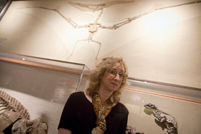 "Wildlife author Sy Mongtomery, author of ""Birdology,"" has a Pteranodon as backdrop before her lecture at the Harvard Museum of Natural History."