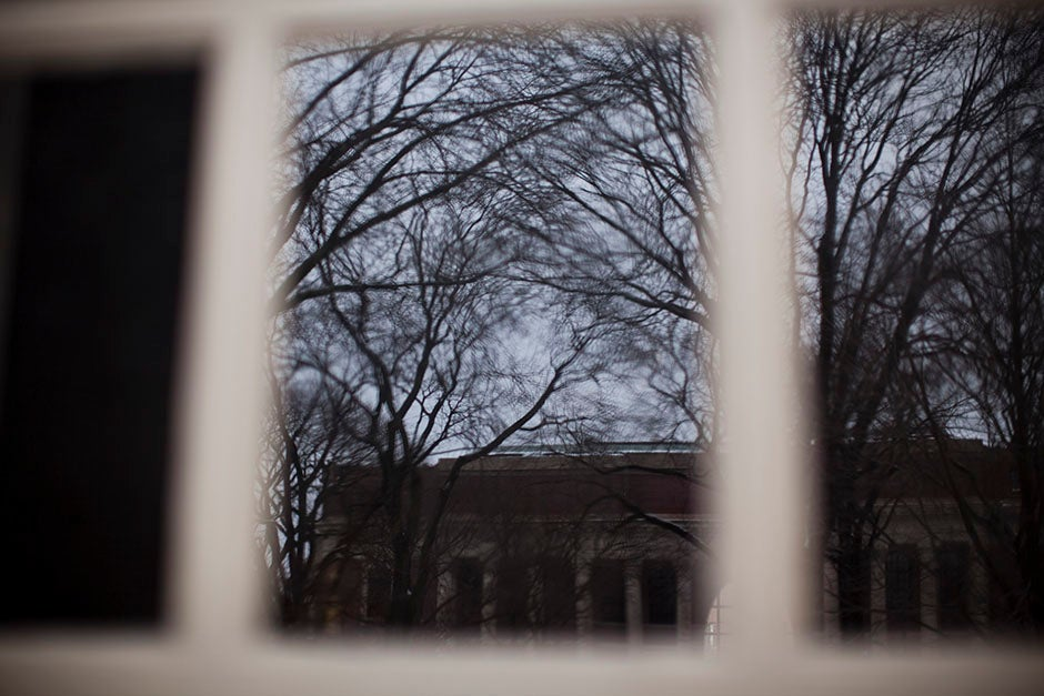This Memorial Church window reveals a wintry entanglement of trees in Harvard Yard. Stephanie Mitchell/Harvard Staff Photographer