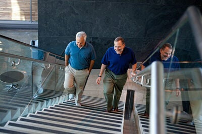 Joshua Sanes (right) and Jeff Lichtman, both professors of molecular and cellular biology at Harvard, have uncovered a mechanism by which exercise and calorie restriction work to improve healthy aging.