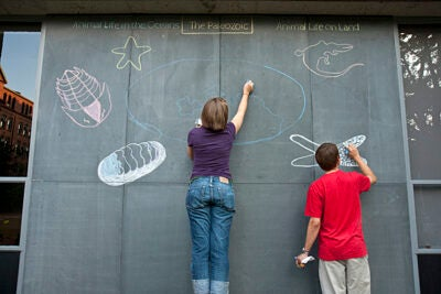 Earth and planetary sciences graduate student Sarah Hurley (left) and research assistant Peter Hedman draw chalk murals on the slate panels outside of Hoffman Laboratory. The murals offer passers-by a glimpse into three earlier eras in the history of life and of Earth.