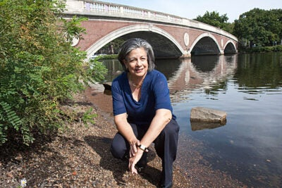 Water utility expert Susan Leal helped transform San Francisco's unsafe water system. Now a senior fellow at the Advanced Leadership Initiative, Leal has co-authored a book on saving the world's water resources with Peter Rogers, Gordon McKay Professor of Environmental Engineering in Harvard's School of Engineering and Applied Sciences.