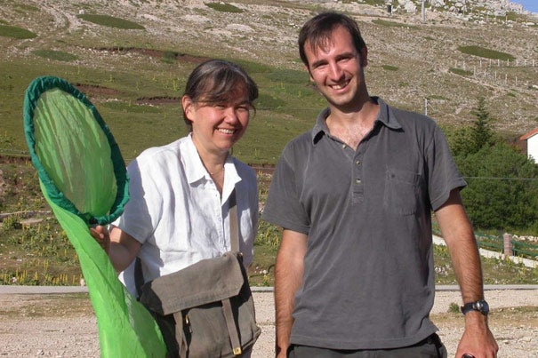 Professor Naomi Pierce (left) and Roger Vila, a postdoctoral fellow who led expeditions to South America, continue to research the unlikely work of Vladmir Nabokov, who studied the migration of certain butterflies in the Americas.