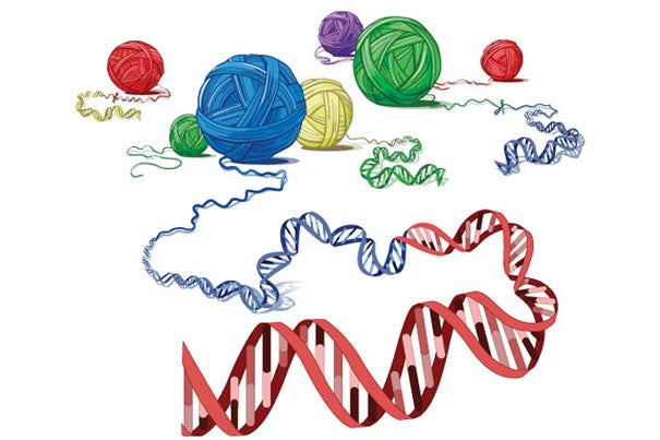 A conceptual illustration conveying the kinds of genomic arrangements that typify this type of cancer.