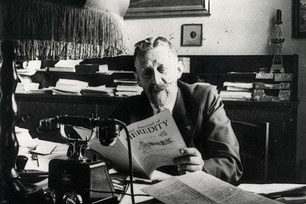 """Eugen Fischer, director of the Kaiser Wilhelm Institute for Anthropology, Eugenics, and Human Heredity from 1927 to 1942,  taught courses for SS doctors, served as a judge on Berlin's Hereditary Health Court, and provided hundreds of opinions on the paternity and """"racial purity"""" of individuals."""