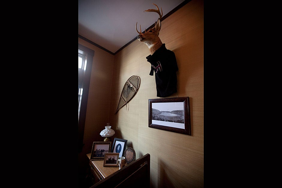 Above a historical photograph of Harvard Stadium, a deer head is dressed with a vintage Harvard sweater. Kris Snibbe/Harvard Staff Photographer