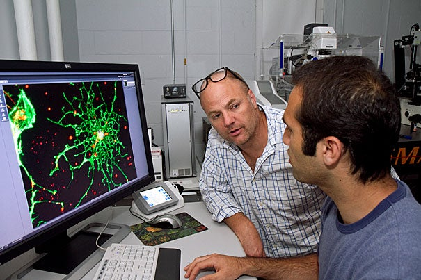 """""""These results have been a long time coming,"""" says principal investigator Kevin Kit Parker (left), a professor of bioengineering at Harvard's School of Engineering and Applied Sciences (SEAS) and a major in the U.S. Army. """"So many young men and women are returning from military service with brain injuries, and we just don't know how to help them."""" Borna Dabiri (right) a graduate student at SEAS worked on Parker's team."""