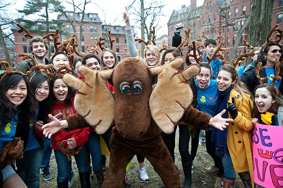 The Dunster moose leads House members in a high-energy cheer on Housing Day, when freshmen receive their House assignments. Jon Chase/Harvard Staff Photographer