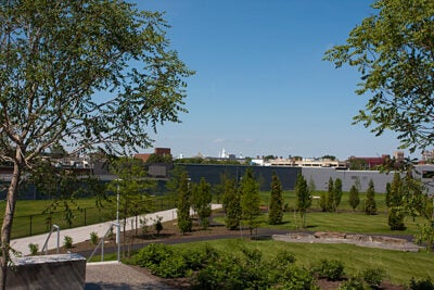 The park contains a tiered area for reading and small classes, a circular event lawn, and a quarter-mile of paths around mostly native deciduous trees, a rain garden, and lawns.