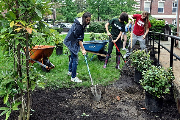 Madeline Holland (from left), Alison Zhang, and Joseph Booth weren't afraid to dig into the landscaping project. The project was part of a new push to get students invested in the campus community by inviting them to work together to make Harvard a better — and more attractive — place.