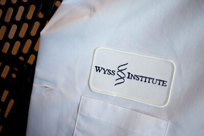The $12.3 million grant awarded to the Wyss Institute for Biologically Inspired Engineering at Harvard will be used to develop a treatment for sepsis, a major cause of injury and death among combat-injured soldiers in the field. File photo by Rose Lincoln/Harvard Staff Photographer