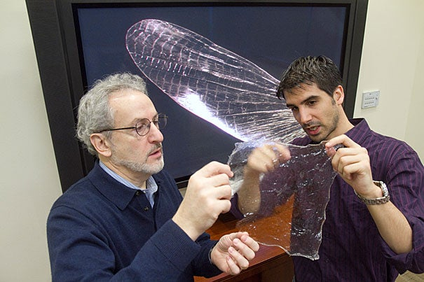 """Postdoctoral fellow Javier Fernandez (right) and Don Ingber, director at the Wyss Institute, have created a new material made from discarded shrimp shells and proteins derived from silk called """"shrilk."""" It is thin, clear, flexible, and hard as aluminum at half the weight. Shrilk not only will degrade in a landfill, but its basic components are used as fertilizer, and so will enrich the soil."""