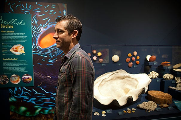 Gonzalo Giribet, professor of Organismic and Evolutionary Biology and curator of invertebrates in the Museum of Comparative Zoology, has collected mollusks and their shells around the world and is working to construct a mollusk family tree. Giribet, who curated a new mollusk exhibit at the Harvard Museum of Natural History, said mollusks are easier to study than soft-bodied invertebrates because even after a mollusk dies, it leaves a shell behind for examination.