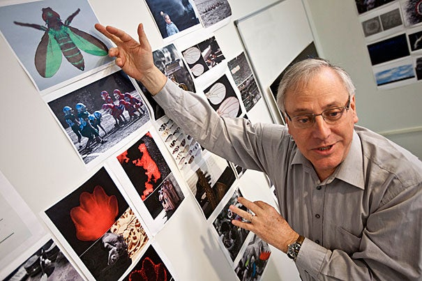 Benny Shilo, a molecular genetics professor, has been peering through a camera lens during his tenure as a fellow at the Radcliffe Institute, where he is working on a project that uses scientific images and photographs of everyday people to explain concepts in developmental biology to the public.