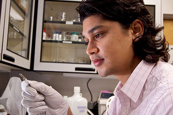 Kevin Vora, a graduate student in applied physics at the Harvard School of Engineering and Applied Sciences, examines a sample in the lab. Vora and colleagues at SEAS led by Professor Eric Mazur developed a fabrication process that enables the creation of nanostructures patterned in three dimensions.