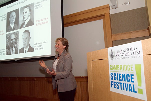 Harvard Forest Senior Ecologist Elizabeth Crone outlined her research on the reproduction of sugar maples and pollination strategies at the Arnold Arboretum during the Cambridge Science Festival.