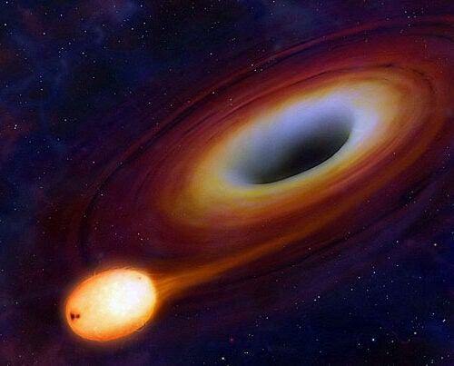 """Black holes are very efficient eating machines,"" said Scott Kenyon of the Harvard-Smithsonian Center for Astrophysics. ""They can double their mass in less than a billion years. That may seem long by human standards, but over the history of the galaxy it's pretty fast."""