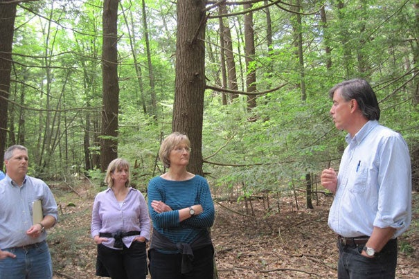 Harvard President Drew Faust (center) listens as Harvard Forest Director David Foster (right) explains the plight of this stand of 200+-year-old Eastern Hemlock trees, now infested with the hemlock woolly adelgid, an invasive pest.