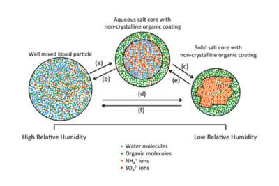 Possible phase transitions of particles containing mixtures of organic and inorganic material: a) liquid-liquid phase separation; b) liquid-liquid mixing; c) and d) inorganic efflorescence; and e) and f) inorganic deliquescence.