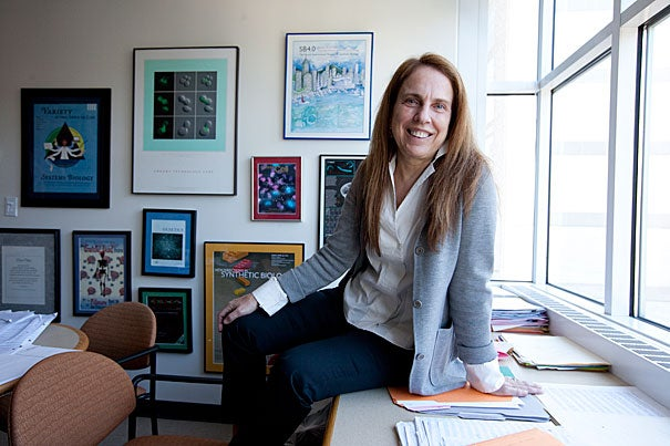 If the field of synthetic biology lives up to its promise, says Harvard Medical School Professor Pamela Silver, cheap, fast genetic sequencing will allow scientists to isolate important functional genes, put them in bacteria engineered to produce and excrete drugs, and then collect the desired product, all for a fraction of the cost of an analogous process today.