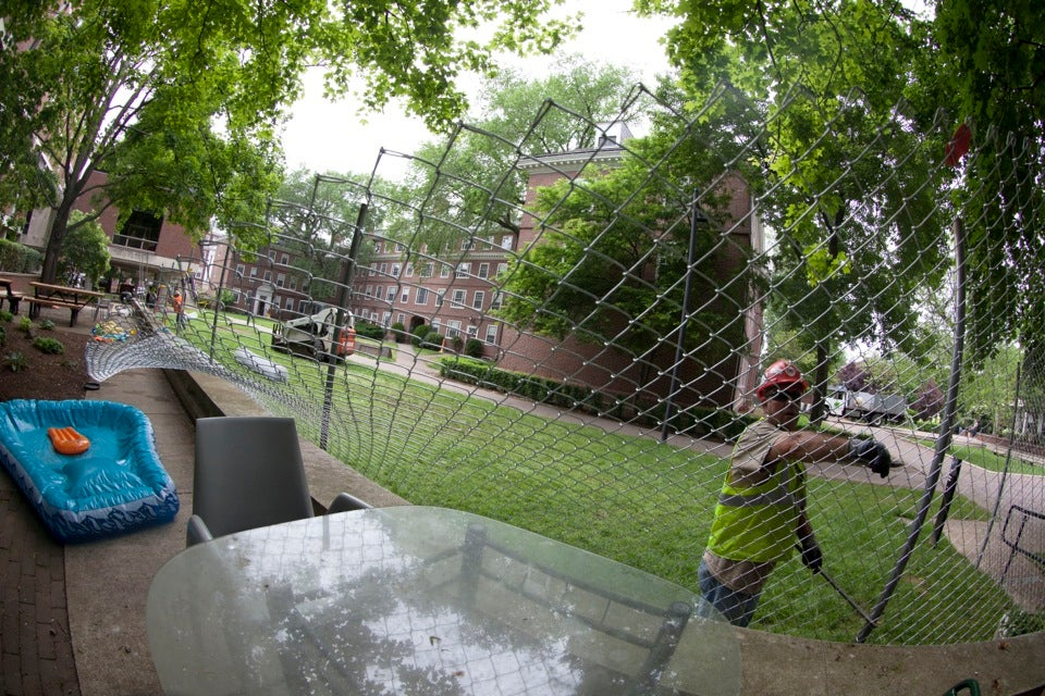 Immediately after Harvard's Commencement, fencing for the Old Quincy House renovation was installed.