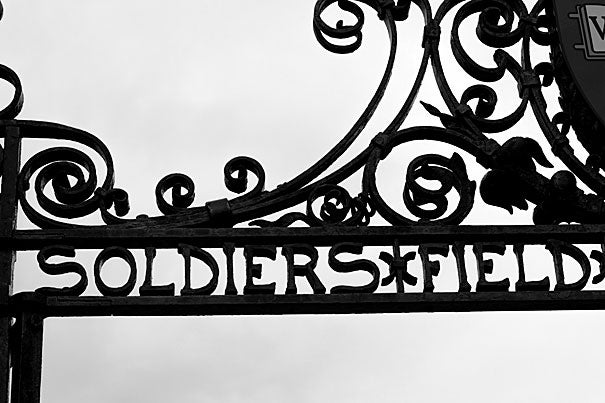 A gate at Harvard University on Soldiers Field Road which runs beside the athletic complex. Photo by Rose Lincoln/Harvard Staff Photographer