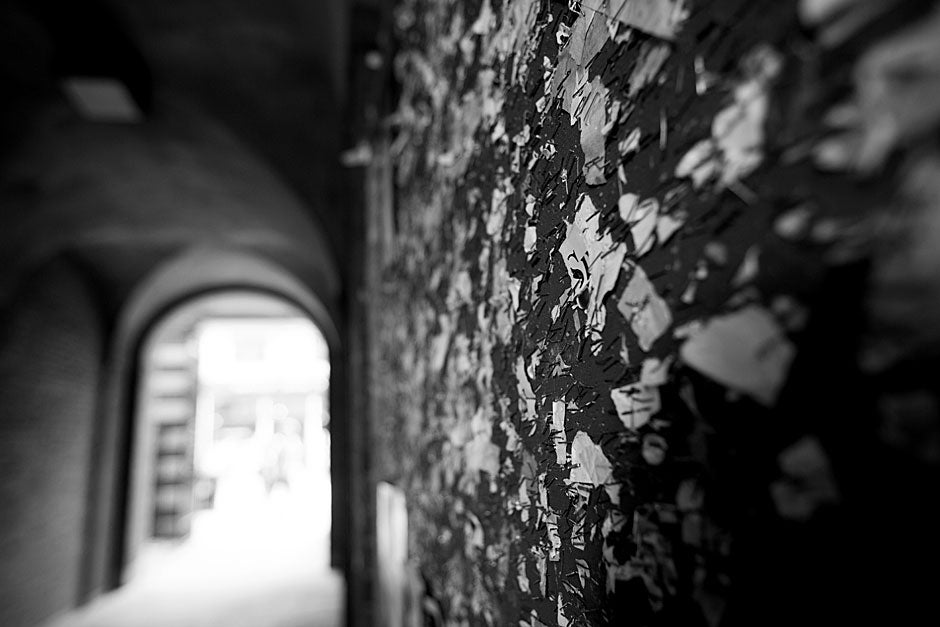 Sometimes there are only the remains of words, as indicated by these remnants of posters on a tunnel wall leading out of Harvard Yard. Rose Lincoln/Harvard Staff Photographer