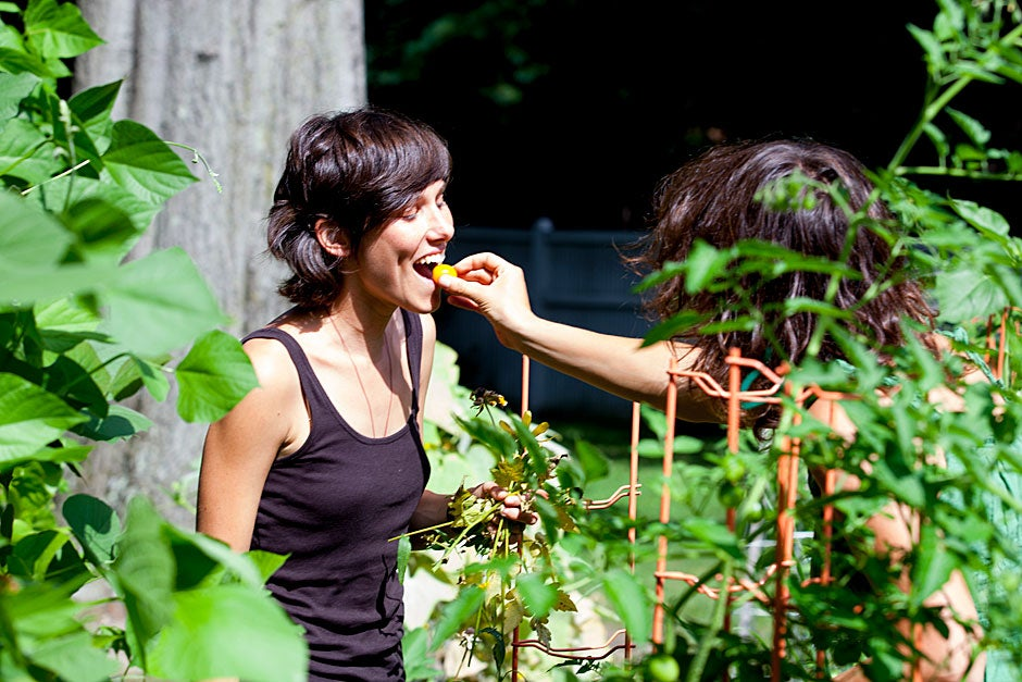 Harvard Divinity School student and garden intern Lily Oster worked hard this summer but the job wasn't without its sweet rewards.